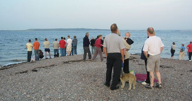 Evening dolphin watching at Chanonry Point