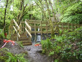 New Fairy Glen Bridge