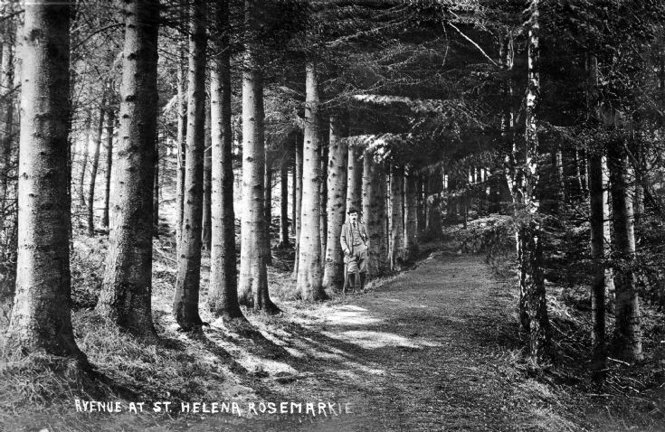 St Helena Rosemarkie