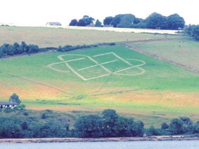 Hillside design by Brian Wright at Corslet Farm